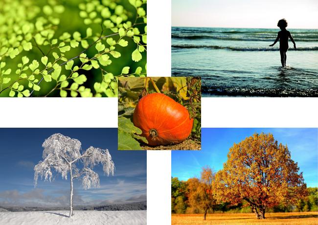 four-seasons_600