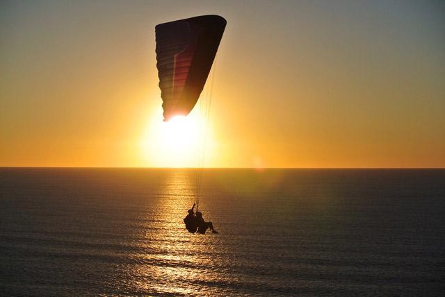 paraglider-web