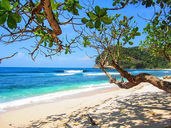 beach-2123440_1920
