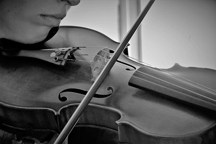 violin-2424958_1920